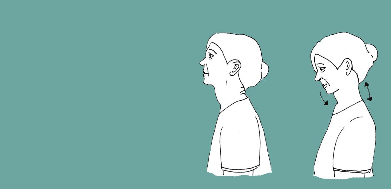 Illustration der achtsamen Haltung für Yoga im Sitzen: Hier der lange Nacken