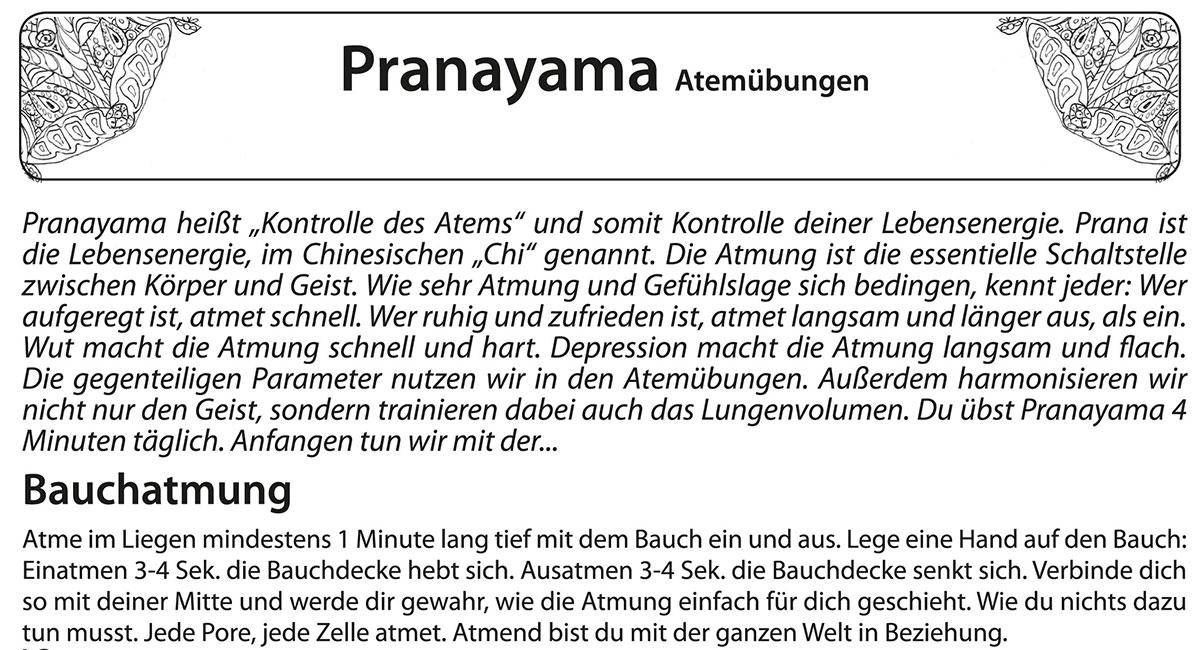 """Textauszug aus meinem Übungsheft """"Yoga für Johanna"""" von Michelle Laise mit der Beschreibung von Pranayama, der Kontrolle des Atems im Yoga. Atem und Geist sind Zwillinge"""