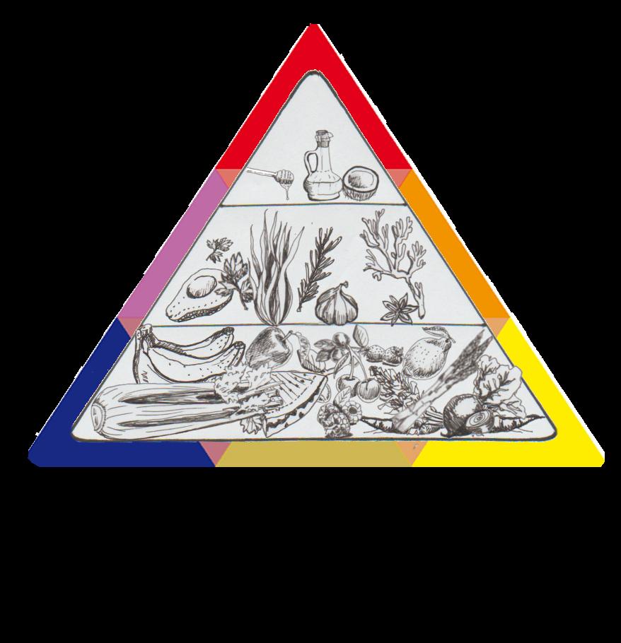 Pflanzliche Vollwert Ernährungspyramide mit Betonung auf sehr viel Obst und Gemüse, wenig Fett und Süßes, damit Essen unser Medizin ist